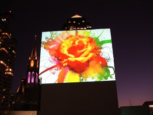 Flowers with Tendrils by Don Relyea at Dallas Aurora 2011